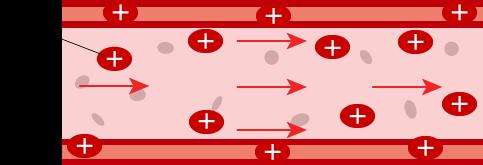 血管はリニアモーターカー