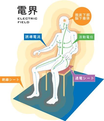 電界治療のイメージ